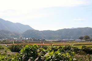 吉賀町(旧柿木村)